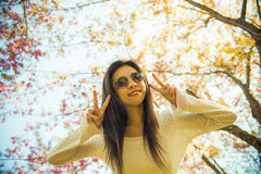 Woman wear eyeglass with pink cherry flower tree Royalty Free Stock Photography