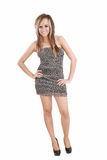 Woman wearing animal print dress Royalty Free Stock Image