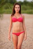 Woman wearing bikini walking on beach. Beautiful sexy brunette woman wearing pink bikini walking on beach Stock Image