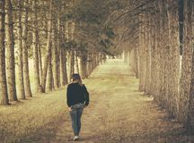 Woman Wearing Black Longsleeve and Gray Jeans Walking on Brown Forest Stock Photos