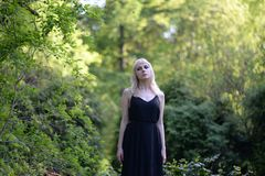 Woman Wearing Black Sleeveless Dress Standing Near Green Leafed Plant stock photography