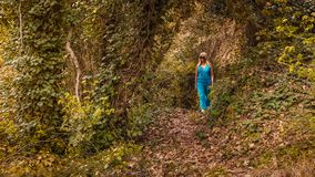Woman Wearing Blue Jumpsuit Walking in Forest royalty free stock images
