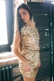 Woman Wearing Brown Sequined Sleeveless Dress Stock Photos