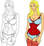 Woman wearing corset royalty free illustration