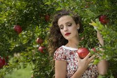 Woman wearing floral long dress against pomegranate trees. Young woman wearing floral long dress standing against pomegranate trees, facing the camera as she Royalty Free Stock Photos