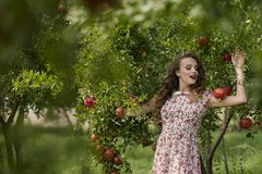 Woman wearing floral long dress against pomegranate trees. Young woman wearing floral long dress standing against pomegranate trees, great time outdoor Stock Image