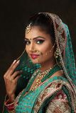 Woman Wearing Green, Brown, and Pink Sari Dress Portrait Photograph Royalty Free Stock Photo