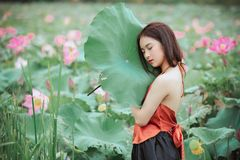 Woman Wearing Halter-neck Top Holding Leaf Stock Image