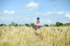 Woman wearing hat with suitcase walking away. Female wearing hat with suitcase walking away through wheat field. Backview of girl in striped dress carring old Stock Image