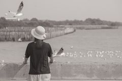 Woman wearing hat weave and standing on concrete bridge, she looking at sea and seagulls flying at Bangpu Recreation Center. royalty free stock images