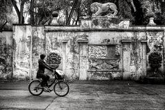 Woman Wearing Jacket and Pants Riding on Bicycle Near Concrete Wall Greyscale Photo Stock Image
