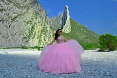 Woman Wearing Pink Gown Royalty Free Stock Image