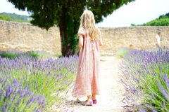 Woman Wearing Pink Maxi Dress Walking Along Unpaved Pathway With Purple Plants Nearby Stock Photography