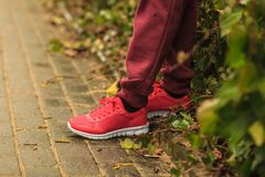 Woman wearing red trainers sportwear shoes. Unrecognizable woman wearing red trainers sportswear shoes and tracksuit during outdoor workout Royalty Free Stock Image