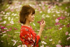 Woman Wearing Red and White Floral Crew-neck Quarter-sleeved Top Picking Flowers Stock Images