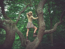 Woman wearing safari hat climbing tree Royalty Free Stock Photography