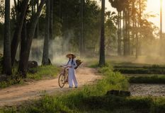 Woman wearing a Vietnamese dress Ao Dai are ride on a bicycle. Along the road in a village at countryside,Woman Vietnam ride on a bicycle stock image