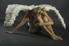 Woman Wearing White Angel Wings Sitting on Ground While Leaning Her Head on Her Knees Stock Image