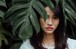 Woman Wearing White Shirt Standing Behind Leaves of a Green Plant royalty free stock images