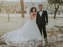 Woman Wearing White Wedding Ball Beside Man Wearing Black Notch-lapel Suit on Pathway Near the Green Grass Field Royalty Free Stock Photography