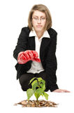 Woman weeding a plant. Stock Photography