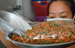 Woman weight dog food in plastic bag for packing Stock Image