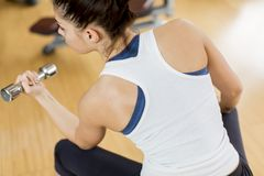 Young woman weight lifting. Woman weight lifting in the gym Stock Images