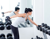 Woman with weight training equipment on sport gym Stock Image