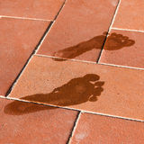 Woman wet foot imprint on a red tile floor Stock Photo