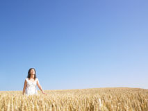 Woman in Wheat Field Stock Image