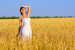 Woman on wheat field Royalty Free Stock Photography