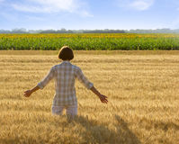 Woman in wheat field Royalty Free Stock Images