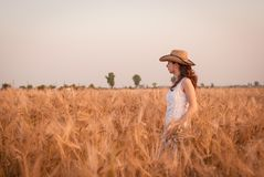 Woman in the wheat field Stock Image