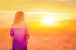 Woman in a wheat field. Girl outdoors enjoying nature. Romantic blonde lady in wheat field at sunset. Beautiful woman walking in golden fields Stock Image