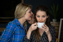 Woman whispering secret into female friend ear in cafe Royalty Free Stock Images