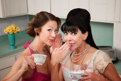 Woman Whispers a Secret. Middle-aged retro styled Caucasian woman whispers secret to her friend Stock Images