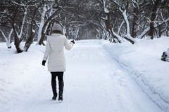 Woman is going away in winter park. Woman in white coat is going away in white winter park Royalty Free Stock Image