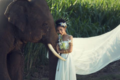 Woman white dress with elephant on wild Royalty Free Stock Photography