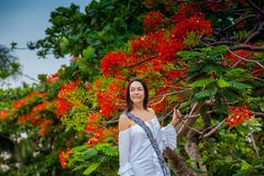 Woman on white dress next to a beautiful flowered tree  at the walls surrounding the colonial city of Cartagena de Indias. A Woman on white dress next to a stock photos