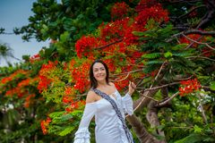 Woman on white dress next to a beautiful flowered tree  at the walls surrounding the colonial city of Cartagena de Indias. A Woman on white dress next to a royalty free stock photography