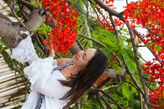 Woman on white dress next to a beautiful flowered tree  at the walls surrounding the colonial city of Cartagena de Indias. A Woman on white dress next to a royalty free stock image
