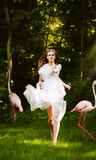 Woman in white dress and pink flamingo Stock Photos