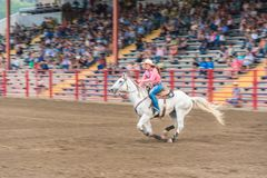 Woman on white horse galloping at high speed at barrel racing competition. Williams Lake, British Columbia/Canada - June 30, 2016: horse and rider race to the Royalty Free Stock Photography