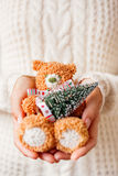 Woman in white knitted sweater holding toy bear with fir tree. Stock Photos