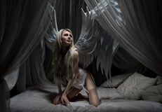 Woman in white lingerie with wings on bed Stock Photography