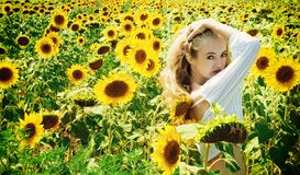 Woman in White Long Sleeve Shirt on Sunflower Field Royalty Free Stock Photography