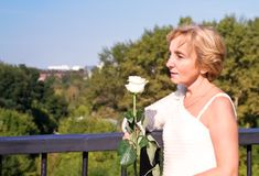 Woman with white rose Stock Photography