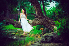 Woman in white sitting in a tree stock photography