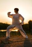 Woman in white suit make's taiji chuan - 11. Woman in white suit make's taiji chuan exercise - chinese marshal art Stock Photography