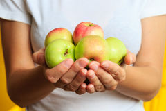 Woman in white t-shirt is holding fresh sweet green apple in his hands. Woman in t-shirt is holding fresh sweet green apple in his hands Stock Image